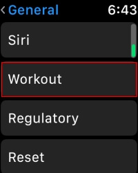 2 Workout Option in Apple Watch Settings