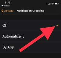 3 Turn off notification grouping on Apple Watch My Watch App