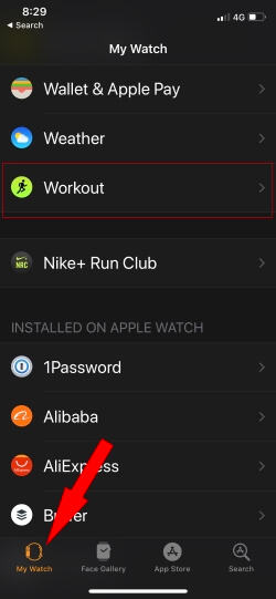6 Apple Watch Workout Settings on My Watch App
