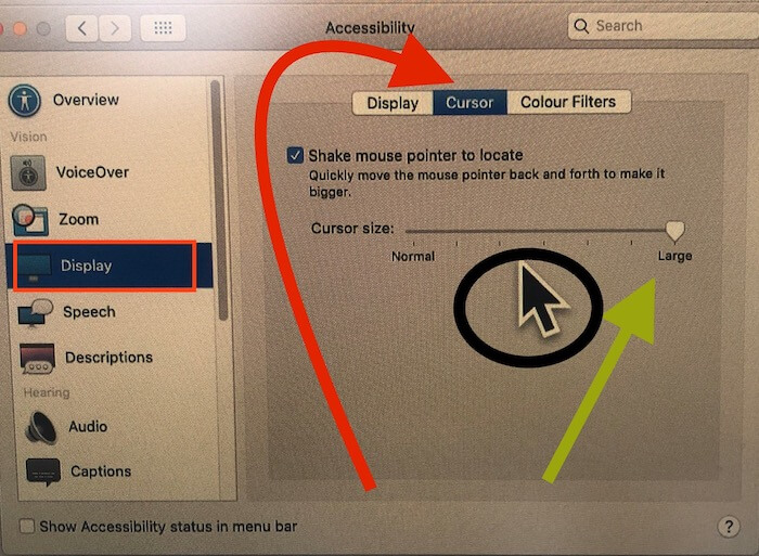 Change Cursor Pointer Size on MacOS catalina on Mac, MacBook