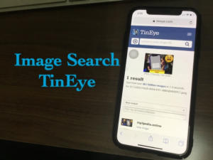 Tineye: Google Images Search Alternatives, How to Use Tineye on iPhone/iPad