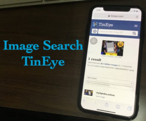3 Image Search with TinEye on iPhone and iPad