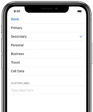 Give a name to Cellular Plan on iPhone XS or iPhone XS Max