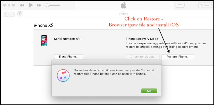 1 Restore iPhone XS Max in DFU Mode