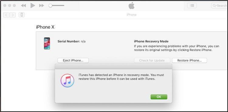 5 iPhone recovery mode using iTunes