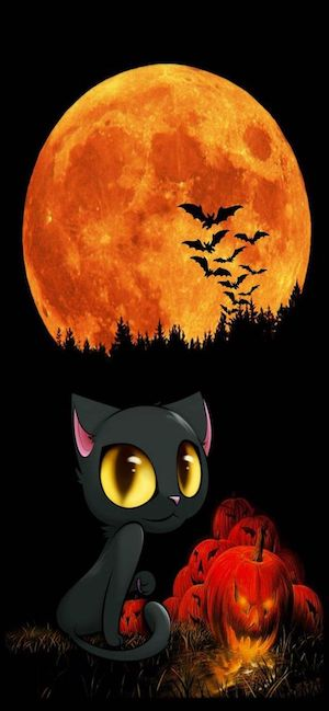 7 Halloween Wallpaper for iPhone XS Max iPhone XS and iPhone XR