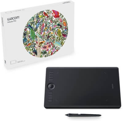 Wacom Intuos Pro Budget Graphics Tablet for Mac