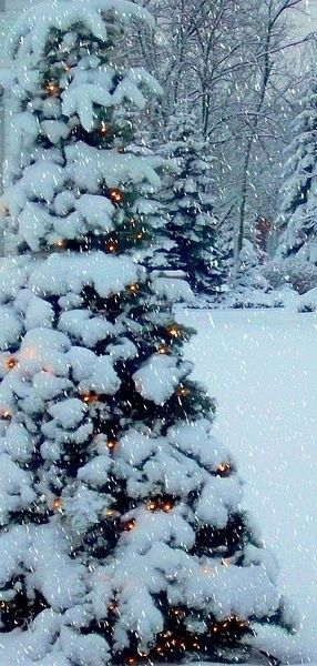 Winter Christmas Wallpaper for iPhone