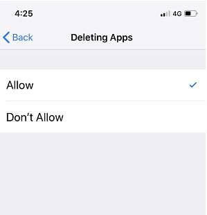 App Deleting Restrictions settings on iPhone
