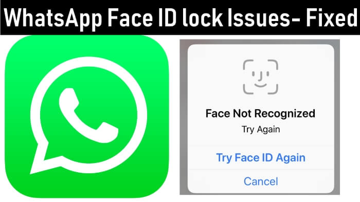 WhatsApp Touch ID/ Face ID is Not Working for on iPhone