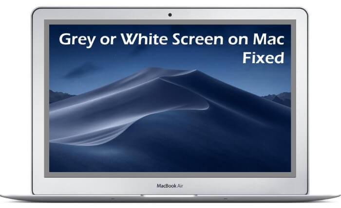 Gray Square Border on Mac Screen Display