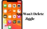 App Won't Delete Jiggle in iOS 13