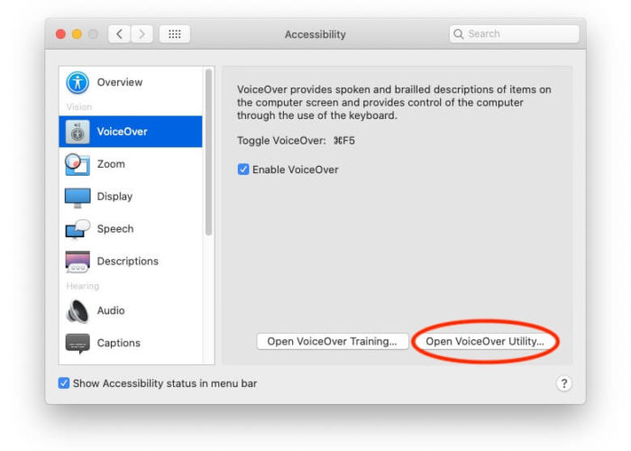 Voice Over Utility on Mac