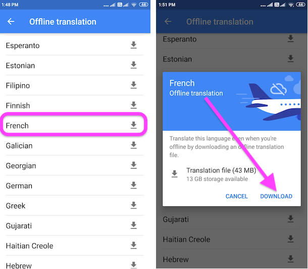 Download Language for Offline Translate