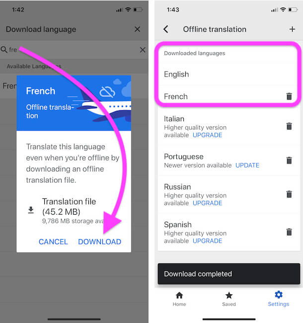 Download file for Offline Translate on iPhone app