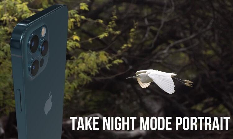 Take Night Mode Portrait on iPhone (1)