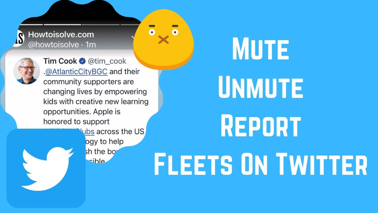 Mute Unmute Report Fleets On Twitter